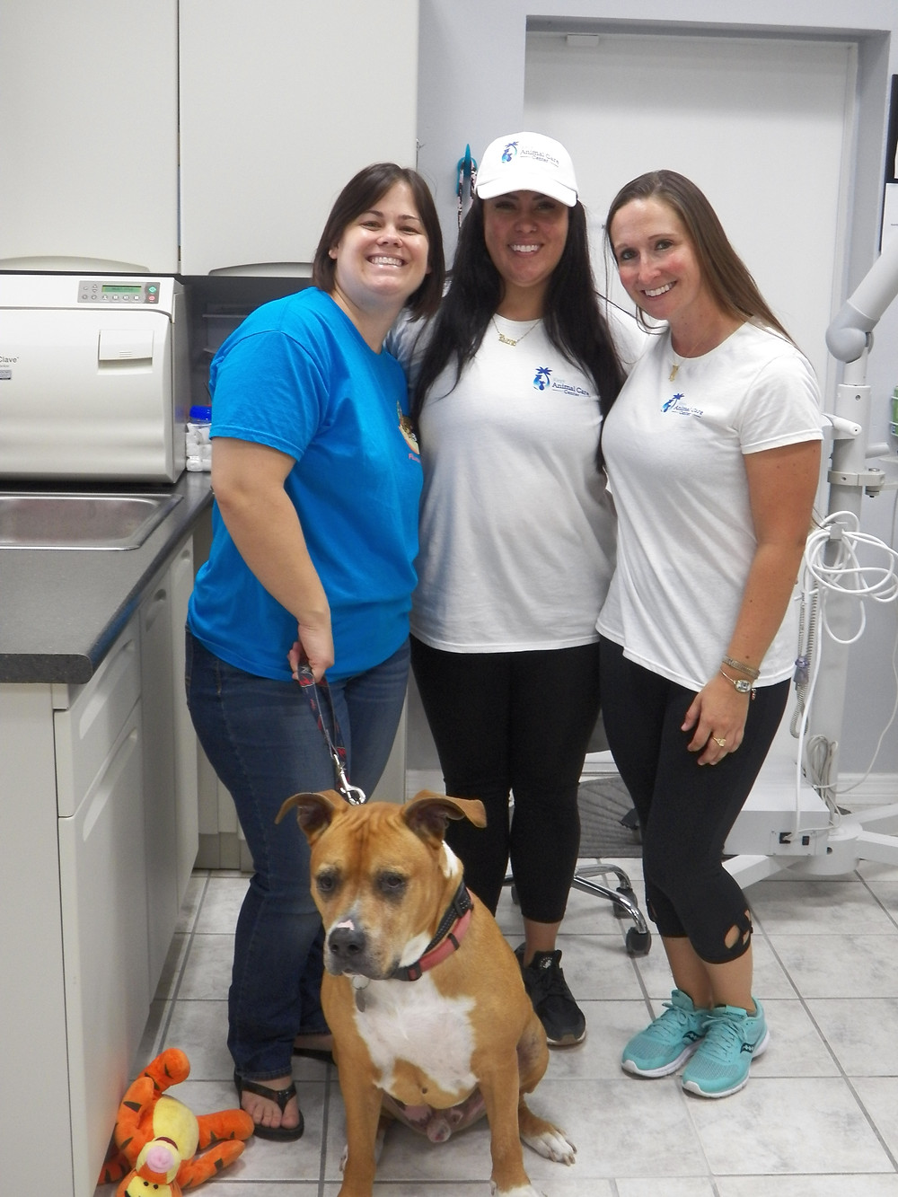 Staff and veterinarian from Keys Animal Care Center on Big Coppit Key.