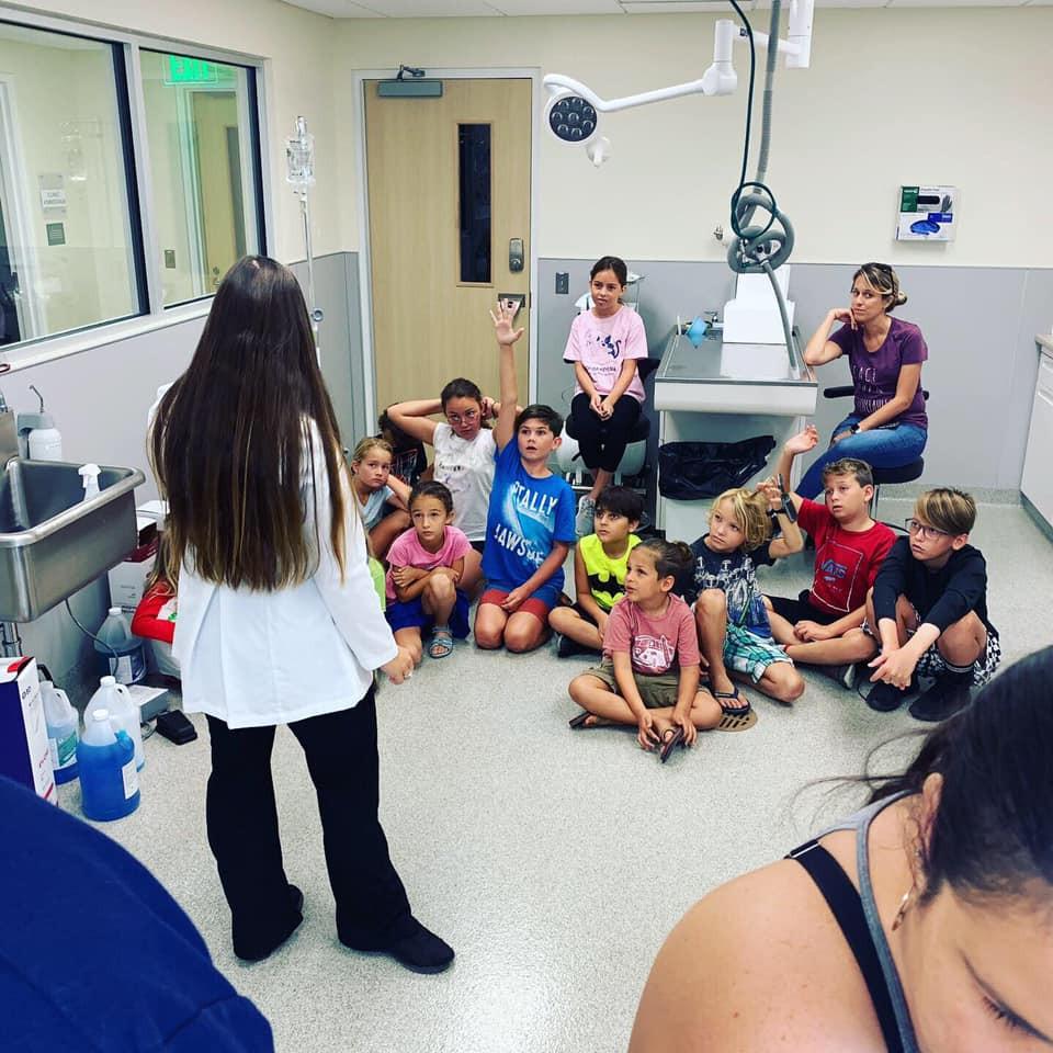 Veterinarian, FKSPCA, Dog, Key West Pets, Veterinary Clinic Big Coppit, Keys Animal Care Center