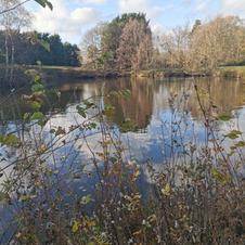 JJs Lakes