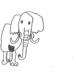 elephant Jerard Harris, 4 x.4 inches, ink on paper, $20.jpg
