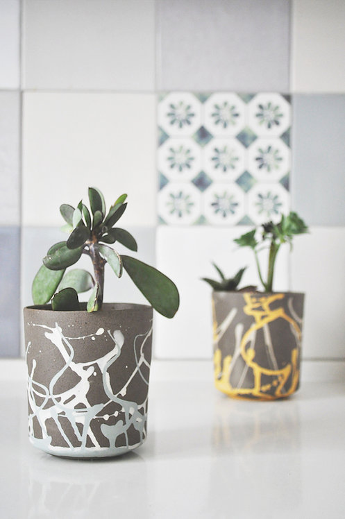 cactus pots, ceramic planters, small planter, plant pot, modern planter, herb planter, house plant, small plant pot, mint, gi