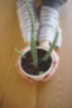 modern planter, succulent planter, small