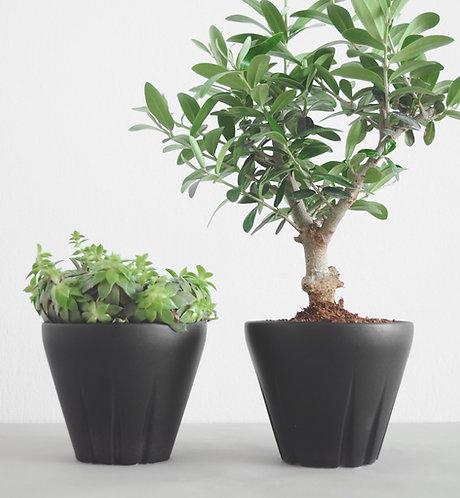 Yucca modern planter, succulent planter, small plant pot, Yucca, ceramic planter, cactus vase, herb planter indoor, Yahalomis