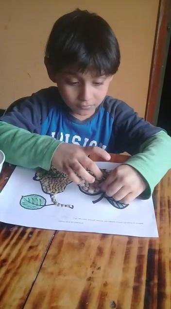 Etian dibujo con semillas.mp4