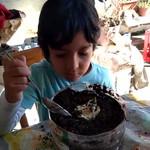 HUERTA 1 JOAQUIN SALINAS.mp4