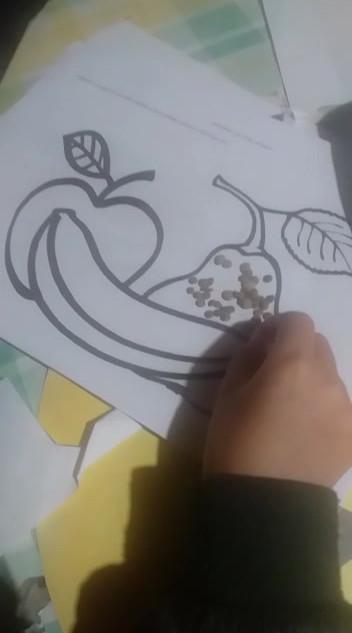 frutas xon semillas Gaspar Cisternas.mp4
