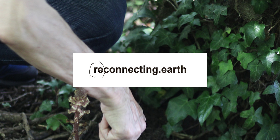 Vernissage de l'exposition (re)connecting.earth
