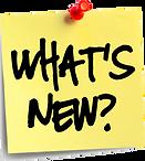 24-247795_10-jun-updates-and-updates-wha