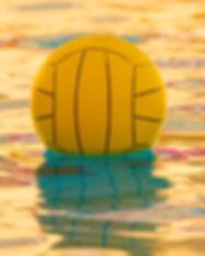 o-WATER-POLO-.jpg
