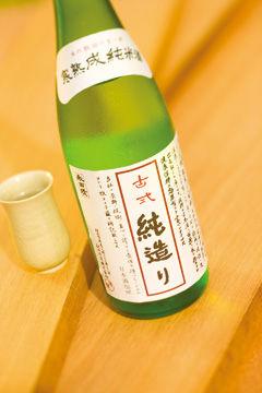 akitaKoshiki03S.jpg