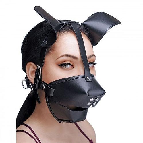 小狗面罩和透氣塞嘴球