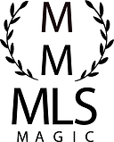 MLS Magic Logo.png
