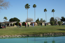 What a view of the golf course and palm trees.