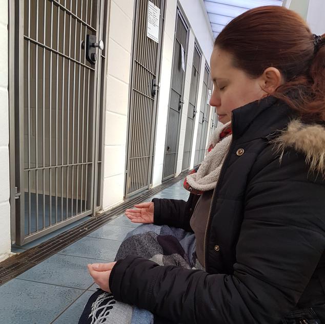 Gabriella during healing work at a rescue centre