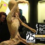 HUMAN BODIES - TORINO