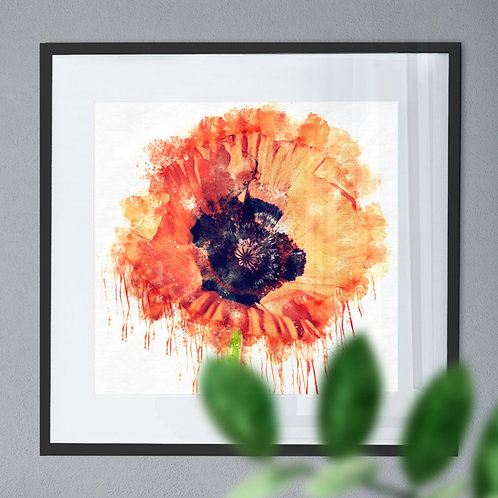 Watercolour Paint Drip Wall Art Print of a Red Poppy Flower