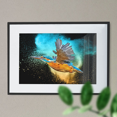 Kingfisher on Explosion of Colour Digital Wall Art Print