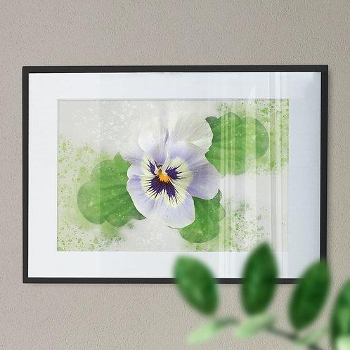 Lilac Pansy Splash Effect Digital Wall Art Print
