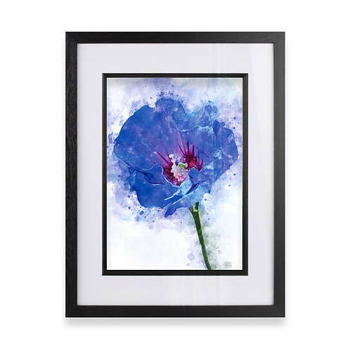 Framed Watercolour Abstract Wall Art Print of a Hibiscus Flower