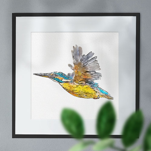 Pen and Watercolour of a Flying Kingfisher Wall Art Print