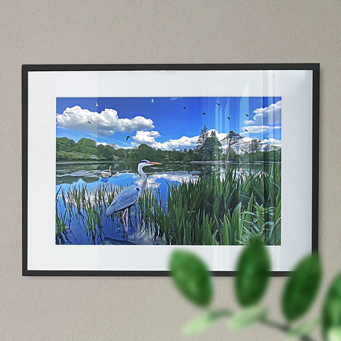 Heron at Queens Park Wall Art Print - Heywood Rochdale Digital Effect