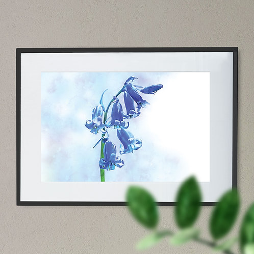 Watercolour Abstract Painting Wall Art Print of a Blue Bell