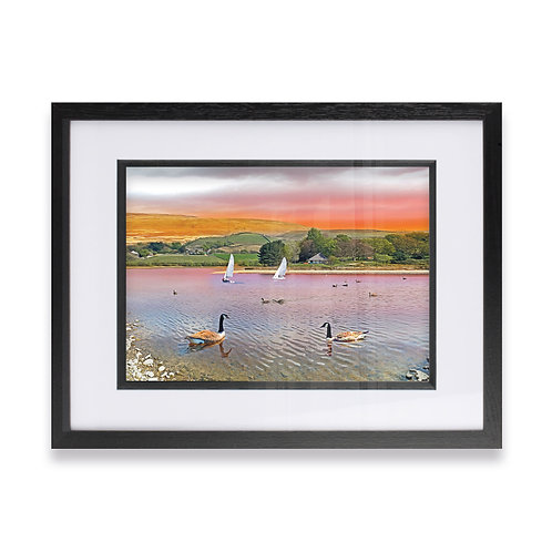 Ducks at Hollingworth Lake, Littleborough Rochdale Digital Effect Framed Prints