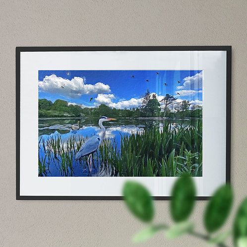 Heron at Queens Park Wall Art Print - Rochdale Oil Painting Effect