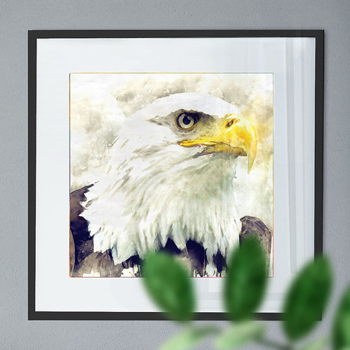 Bald Eagle Digital Watercolour Wall Art Print