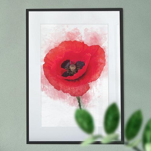 Watercolour Poppy Digital Wall Art Print