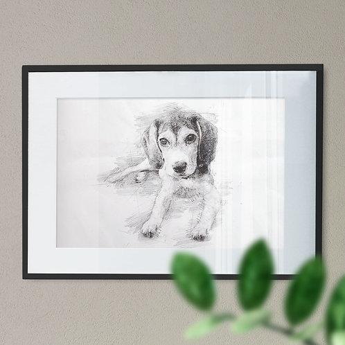 Pencil Drawing of a Beagle Puppy Lying Down Wall Art Print