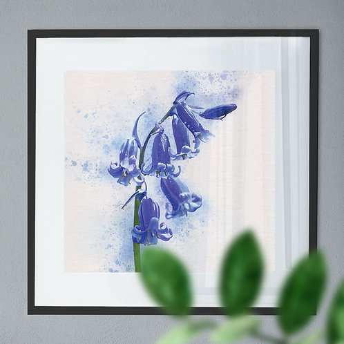 Watercolour Painting - Wall Art Print of a Blue Bell