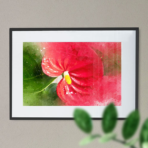 Watercolour Abstract Painting - Wall Art Print of a Anthurium