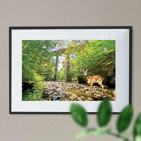 Deer at Healey Dell Wall Art Print - Rochdale Oil Painting Effect