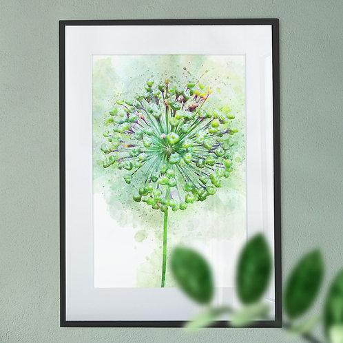 Digital Wall Art Print of Watercolour Abstract Allium