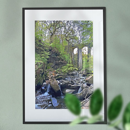 Squirrel at Healey Dell Wall Art Print - Digital Effect
