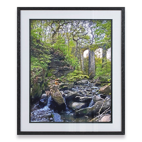 Squirrel at Healey Dell Rough Brushtroke effect - Framed Print