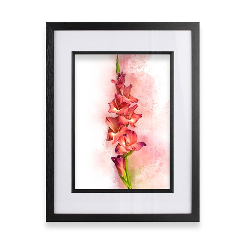 Watercolour Explosion Wall Art Print of a Gladioli