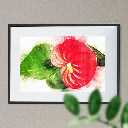 Watercolour Painting Wall Art Print of a Anthurium