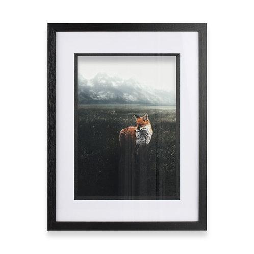 Fox on the Moors Photographic Print, Fine Wall Art Photography