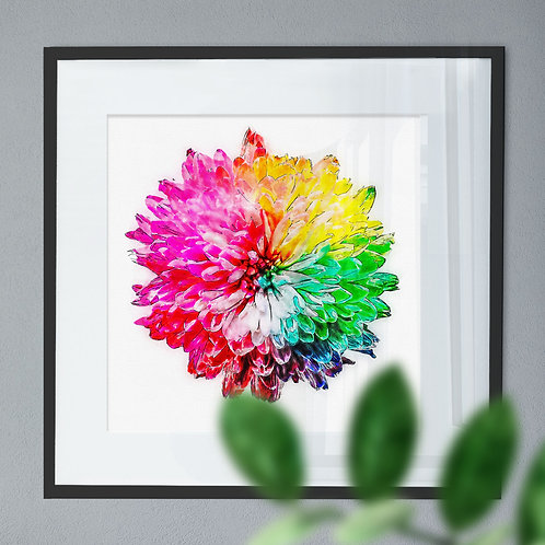 Watercolour Wall Art Print of a Rainbow Flower
