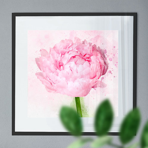 Watercolour Painting Wall Art Print of a Peony