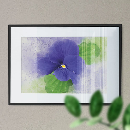 Wall Art Print Pretty Purple Pansy Splash Effect