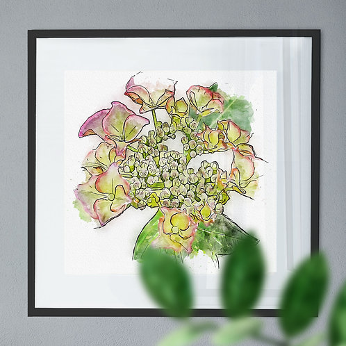 Pen and Watercolour Painting Wall Art Print of a Hydrangea