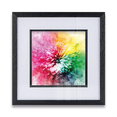 Rainbow Flower Abstract Framed Print