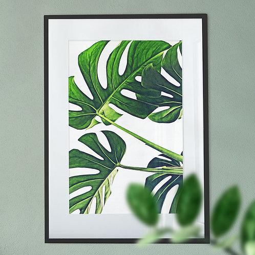 House Plants Digital Wall Art Print
