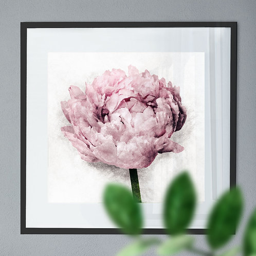 A Vintage Painting Wall Art Print of a Peony