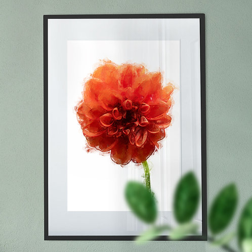 Oil Painting Wall Art Print of A Red Dahlia