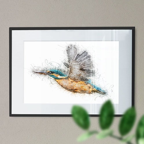 Flying Kingfisher Scribble Effect Wall Art Print (Pencil Drawing)