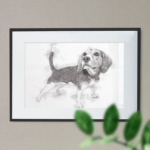 Soft Pencil Drawing of a Beagle Black and White Wall Art Print